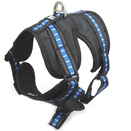 Brother CATDOG Premium Hundegeschirr | Gepolstert und Atmungsaktiv | Reflektierende Elemente | Brustgeschirr für kleine und große Hunde | Verstellbare Gurte | Laufgeschirr | Sicherheitsgeschirr (L, Blau)