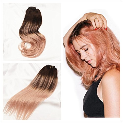 Alizee Clip In Hair Extensions 7pcs 120g Rose Gold Blonde Balayage