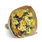 Bouquet Provence-Sanremo fleurs séchées de la Riviera dei Fiori Italie