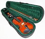 Geige / Violine Garnitur + Koffer & Bogen. 1/4