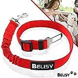 BELISY Hunde Sicherheitsgurt fürs Auto I passend für alle Hunderassen I Rot