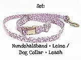 Set Hundehalsband & Hundeleine - Sternenstaub