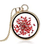 Damen Hals-Kette mit Anhänger echte Dill-Blüte gold-farben Medaillon Glas rund rote echte Blume...