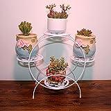 FPigSHS Blumenständer Eisen Kunst Tischfahrrad Pot Rack Büro platzsparend Multifunktions Regal Fensterbank Balkon Pot Rack (Farbe : Weiß)