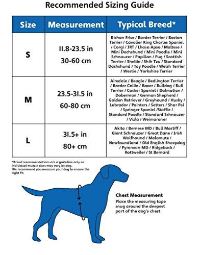 Halti Hundegeschirr, Größe M - 3