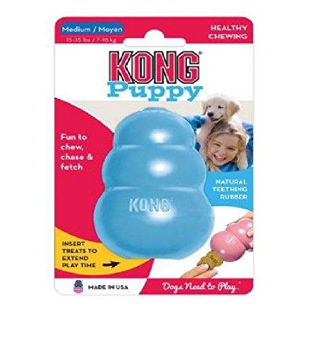 PUPPY KONG Medium farblich sortiert (Puppy Kong Medium)