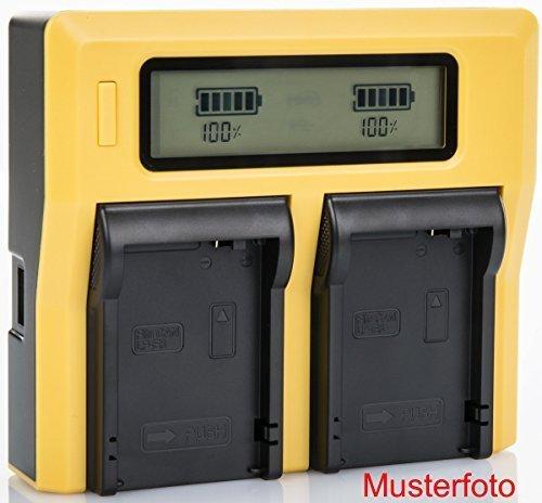 Bundlestar Caricatore doppio per la batteria Sony NP FV50 FV70 FV100 FH50 FH70 FH100