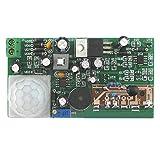Pinzhi DIY Pyroelektrische Infrarot Sensor Kits Anti Diebstahl Schaltung Elektronische Technologie