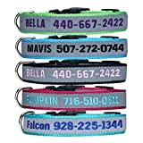 Hundehalsband Personalisierte Halsband mit Namen und Telefonnummer Bestickt für Hunde Pet Halsband