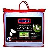 Couette DODO Canada - Piumino 50% piume d'oca