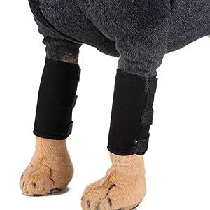POPETPOP Chien Canine Compression Manchon Protéger Accolade Blessure pour Blessures de Guérison Blessures et Protection Entorse Taille L (Noir)