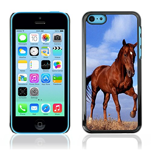 Graphic4You Pferd Tier Design Harte Hülle Case Tasche Schutzhülle für Apple iPhone 5C Design #4
