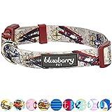 Blueberry Pet Traumhöhen Flugzeug & Kompass Designer Hundehalsband in Hell-Taupe, L, Hals 345cm-66cm