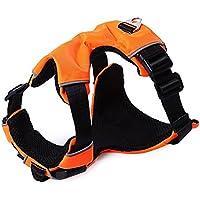 Zhuhaimei,Classic Acolchada Confortable de Aventura al Aire Libre Perro Mascota Chaleco - Arnes(Color:Orange,Size:S)
