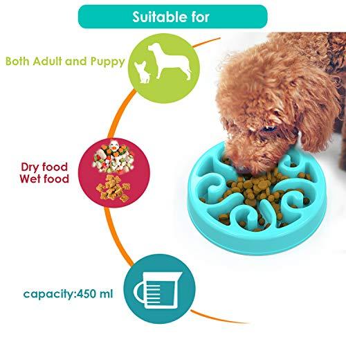 Zoom IMG-3 zellar ciotola per cani alimentazione