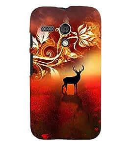 PrintVisa Animal Print & Pattern 3D Hard Polycarbonate Designer Back Case Cover for Motorola Moto G