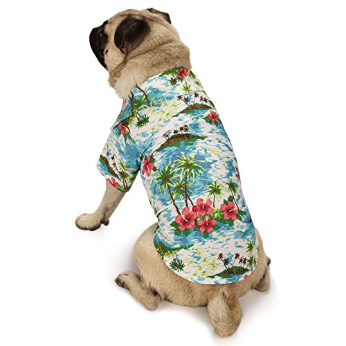 Casual Canine Hawaiian Breeze Camp Shirt für Hunde, X-Small, blau -