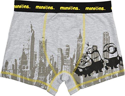 Minions Boxershort New York, grau (XL)