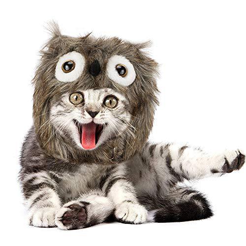 JDYW Wärme Katze Kostüm Monster Kostüm für Katzen Hunde Weihnachtsfeier Katzenkostüm Hundekostüm Pet Perücke