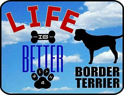 Promini Life is Better with A Border Terrier laminiertes Hundeschild Dekoschild aus Aluminium mit Löchern, Aluminum, Multi, 15x23cm/ 6x9 in (Zaun, Unsichtbaren Zwei Hunde)