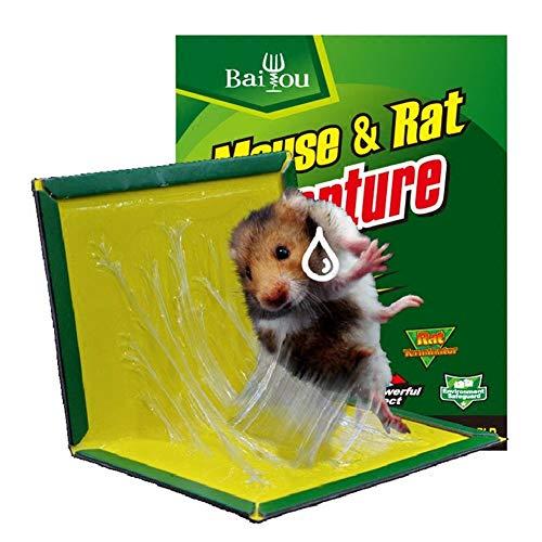 6 stücke Klebefalle für Ratten Mäuse Picks Gleiten Sehr Effektive Insektenvernichter Respektiert Umwelt Harmlos Platten Kunststoff -