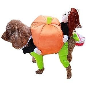 Molkerei Shop, Lustige Halloween und Kürbis Kostüme für Hunde