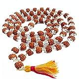 Himalaya Rudraksh Anusandhan Kendra Silver Cappings 72 Beads for Men and Women