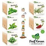 Feel Green Ecocube Set di Erbe con 5 varietà - 25% Risparmio nel Pacchetto, Piante nel Dado in Legno, Idea Regalo sostenibile, Grow Your Own/Set di Coltivazione, Made in Austria
