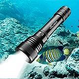 Best Dive Torches - Dive Torch, Volador 2000 Lumens LED Scuba Diving Review