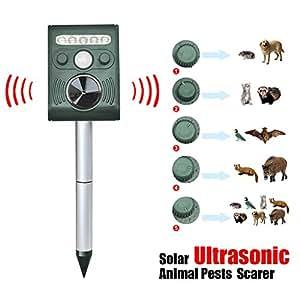 tinkertonk de repousse chats ultrasons pour chien renard pouvantail r pulsif r pulsif. Black Bedroom Furniture Sets. Home Design Ideas