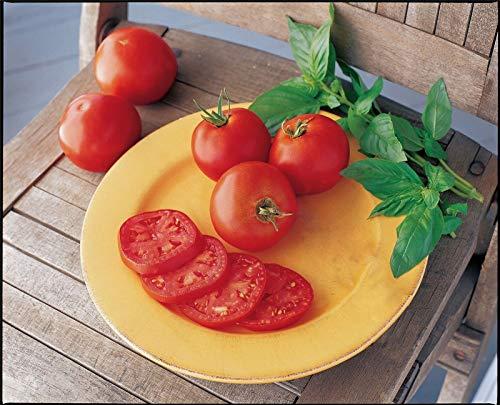 Portal Cool Gemüse - Tomaten - r Keeper - 50 Samen - Großer (Samen Keeper)