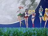 Akt 1: Usagi - Sailor Moon