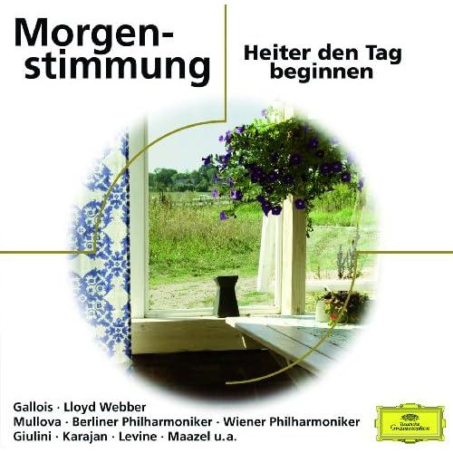 Grieg: Peer Gynt Suite No.1, Op.46 - 1. Morning Mood