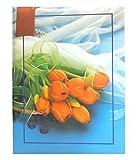 #4: Gupta Fancy Store Natraj Memo Screw Type 300 Pocket Album (4 x 6-INCH)