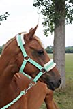 NEW Horse print fur padded headcollars halter + matching lead MINT GREEN F/C/P (PONY)