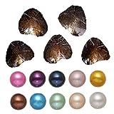 Unbekannt Auster mit Perle Innen Süßwasser Love Wish Pearl Shell Oyster Perlen 7-8mm 100/Pack