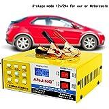 lzndeal Chargeur de batterie intelligent, Voiture électrique sèche et humide de chargeur de batterie 12V/24V intelligente de réparation d'impulsion