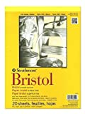 "Strathmore Artist Papers 300 Series Bristol Board Paper Pad Smooth Surface (9"" x 12)"""