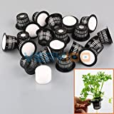 New 20Set Dia.43mm Mesh Pot Net Basket+Clone Collar Foam Insert Hydroponic Aeroponic Plant