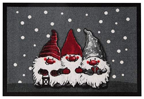 HANSE Home Design Fussmatte Schmutzfangmatte Weihnachtszwerge, Polyamid, Grau, 40 x 60 x 0.7 cm