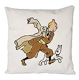 Uk print king Tintin and Snowy Poster, Taie d'oreiller, Housse de Coussin, décoration de canapé à la Maison...
