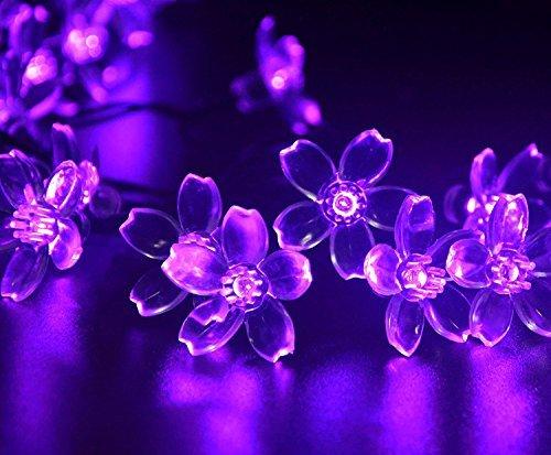Hivel 50 LED Luci Stringa Solare Fiore Fata Lumi Blossom Outdoor Natale String Lights per Decorazione Esterni Christmas Xmas New Year Giardino - Porpora
