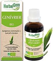 HerbalGem - Genévrier Bio - Macérats-Mères de Gemmothérapie Concentrée - 30 ml