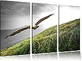 Majestic Bald Eagle Nero / Bianco 3 pezzi immagine immagine tela 120x80 su tela, XXL enormi immagini completamente Pagina con la barella, stampe d'arte sul murale cornice gänstiger come la pittura o un dipinto ad olio, non un manifesto o un banner,