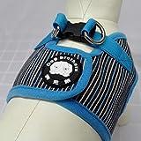Hunde-Cowboy im Vest-Stil, der die Brust nach hinten zieht, L