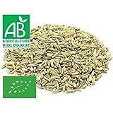 Fenouil Bio graines 1 kg