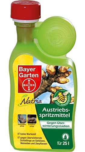 Bayer austrieb fruitiers – 500 ml