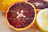 Pinkdose 20 PCS/BAG roter Zitronenbaum ist auch Blutorange Bio Obstpflanzen rot Kalkwerke gesunden Nahrung Hausgarten Blumentopf Bonsai: 2