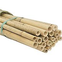 HYF Cañas de bambú para jardín, pack de 10 varillas de bambú de 220 cm, diámetro 18/20 mm, tutores de bambú para soporte de apoyo para plantas, hortalizas, estas estacas de bambú son excelentes para sujetar árboles pequeños, de calidad, fuertes, tratamiento fitosanitario, fumigadas