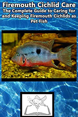 Firemouth cichlid care the complete guide to caring for for Easiest fish to care for